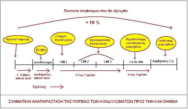 hpv_reg3.jpg
